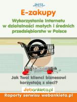 Wykorzystanie Internetu w działalności małych i średnich przedsiębiorstw w Polsce